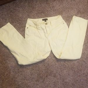 Women's Dana Buchman pale yellow pants